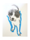 Terrier, 2012 Giclee Print by Sally Muir