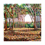 Line of Trees, 2009 Giclee Print by Noel Paine