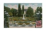 Frankfurt, Palmengarten, Das Blumenparterre. Postcard Sent in 1913 Giclee Print by  German photographer