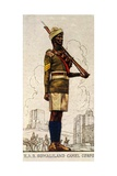 Sergeant of the Somaliland Camel Corps, King's African Rifles, 1938 Giclee Print