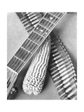 Mexican Revolution, Guitar, Corn and Ammunition Belt, Mexico City, 1927 Papier Photo par Tina Modotti