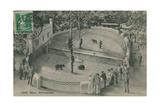 Bern Zoo, Bear Garden. Postcard Sent on 19 June 1913 Giclee Print by  German photographer
