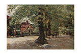 The Grove, Highgate Giclee Print by Francis S. Walker
