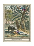 The Bear and the Two Companions Giclee Print by  French School