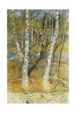 Springflood, 1902 Giclee Print by Carl Larsson