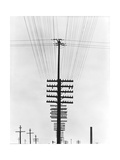Telegraph Wires, Mexico, 1925 Fotografisk tryk af Tina Modotti