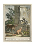 The Wolf Pleading Against the Fox in Front of the Monkey Giclee Print by  French School