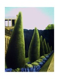 Chatsworth, 1989 Giclee Print by Ann Brain