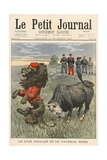 The English Lion and the Boer Bull Giclee Print by  French School