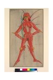 Coreb - a Spirit, Design for a Stage Dress for the Merry Devil of Edmonton, 1921 Giclee Print by Claud Lovat Fraser