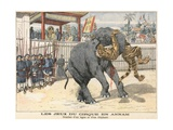 Combat Between a Tiger and an Elephant Giclee Print by  French School