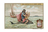 Arion and the Dolphin Giclee Print by  European School