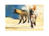 Striped Hyaenas, 2010 Giclee Print by Mark Adlington