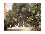 The Magnolia Tree, Aranjuez Giclee Print by Mima Nixon