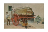 Loading Bottles of Wine onto a Cart, Florence. Postcard Sent in 1913 Giclee Print by  Italian Photographer