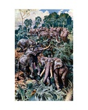 Elephants Destroying a Palm Grove Giclee Print by Harry Hamilton Johnston