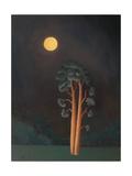 Stamford Pines, 2005 Giclee Print by Ann Brain