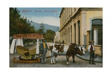 Ox Cart in Madeira. Postcard Sent in 1913 Giclee Print by  Portuguese Photographer