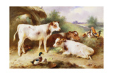 Calves and Poultry by a Byre, 1922 Reproduction procédé giclée par Walter Hunt