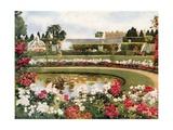 The Parterre de Latone, Versailles Giclee Print by Mima Nixon