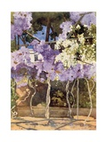 The Wistaria Bower, the Royal Palace, Athens Giclee Print by Mima Nixon