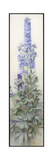 Delphiniums, c.1920 Giclee Print by James Valentine Jelley