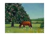Horse Chestnut, 2001 Giclee Print by Ann Brain