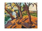 Ageing Trees, 2009 Giclee Print by Marta Martonfi-Benke