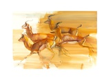 Running Gazelles, 2010 Giclee Print by Mark Adlington