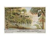 Prehistoric World Giclee Print by  European School
