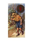 Scout Tracking Badge, 1929 Giclee Print by  English School