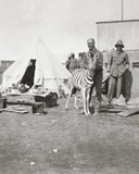 South African Gunners with their Pet Zebra in East Africa Photographic Print by  English Photographer