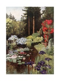 The Pond, Wolfsgarten Giclee Print by Mima Nixon
