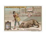 Androcles and the Lion Giclee Print by  European School