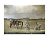 A Farmer and Two French Soldiers Ploughing with Two Horses, Marne, France, 1917 Giclee Print by Fernand Cuville