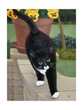 Sugar on the Patio Wall, 1998 Giclee Print by Ann Brain