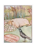 And the Sheep Went to Sleep, Illustration from 'Johnny Crow's Party', c.1930 Giclee Print by Leonard Leslie Brooke