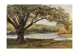 The Vale of Avoca Giclee Print by Francis S. Walker