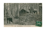 Father and Son Looking at Lion Sculpture in Saint Dizier. Postcard Sent in 1913. Published by the… Giclee Print by  French Photographer