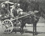 Ekha Cart, Cawnpore, January 1912 Stampa fotografica di  English Photographer