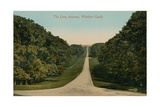 The Long Avenue, Windsor Castle in England. Postcard Sent in 1913 Giclee Print by  English Photographer