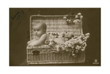 Postcard of a Baby in a Wicker Basket with Flowers, Sent in January 1913 Impressão giclée por  French Photographer