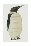 Menu in the Shape on an Emperor Penguin, for the Midwinter's Day Dinner, Cape Evans, 22nd June 1912 Giclee Print by Edward W. Nelson