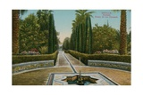 Cypress Walk, Alcazar, in Seville, Spain. Postcard Sent in 1913 Giclee Print by  French Photographer