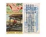 Principal Areas for Catching Salmon, from the Series of 'Products of the World' Cigarette Cards… Gicléedruk