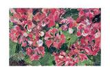 Rhododendron, 1962 Giclee Print by Izabella Godlewska de Aranda
