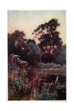 Worcester College Garden Giclee Print by William Matthison