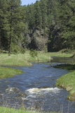 French Creek, Where Gold Was Discovered in the Black Hills, South Dakota Photographic Print