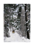 Sleigh-Ride Through the north Shore Woods, Massachusetts, 1800s Giclee Print