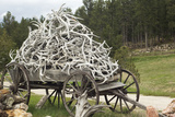 Wagonload of Elk and Deer Antlers, Custer, South Dakota Photographic Print